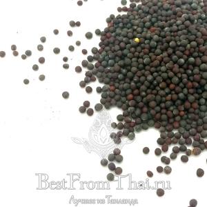 Семена черной горчицы (тестер)