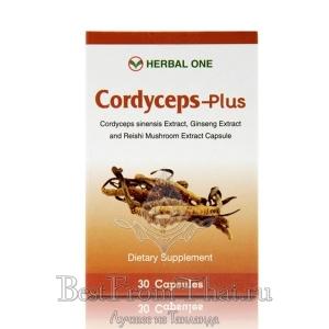 Экстракт кордицепса с экстрактами линчжи и женьшеня