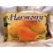 Фруктовое мыло Harmony манго