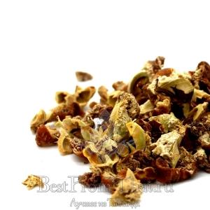 Амла (чай из сушеных фруктов)