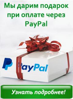paypal_promo.jpg