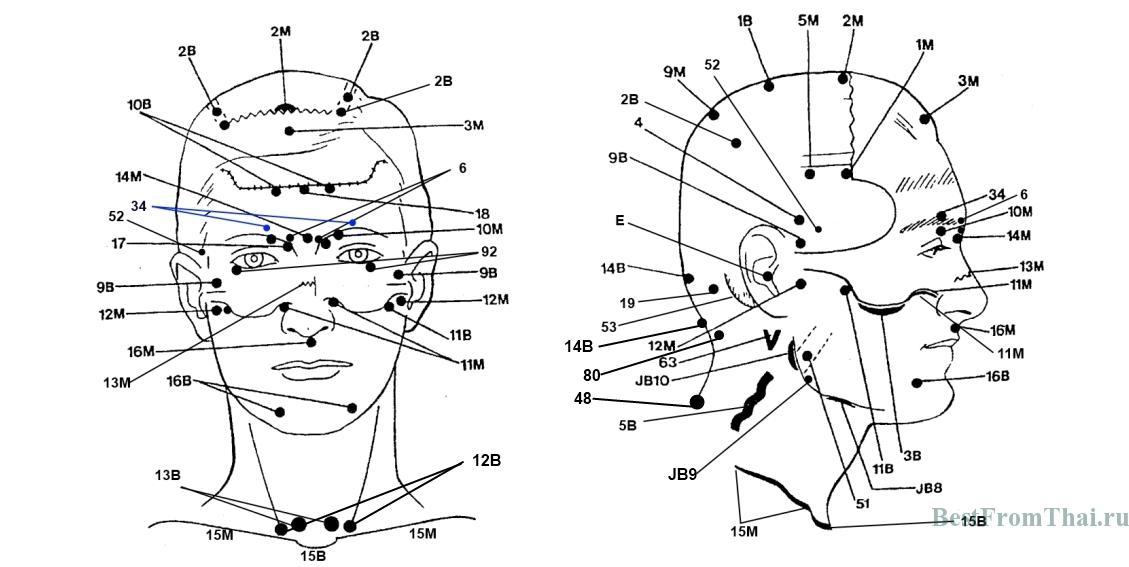 Massazh litsa1 Биологически активные точки на лице и голове