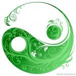 Yin Yang by Chillmaster21 150x150 Работа организатором СП, или чем заняться в декрете