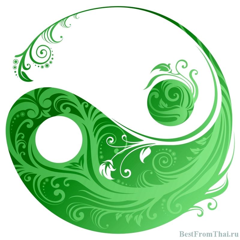Yin Yang by Chillmaster21 Учимся слышать свой организм   основы восточной медицины