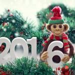 Приятный сюрприз под Новый Год или Обезьянье лакомство