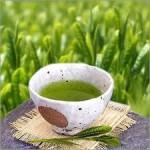 История тайского чая