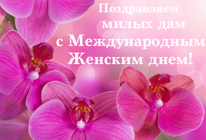 orhidei Цветочные подарки для милых дам! Часть вторая.