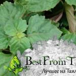 Тайский борнеол —  камфора борнейская из пачули. Полезные свойства и применение