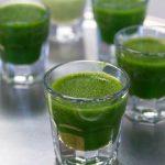 Хлорофилл. Секреты загадочной зелёной жидкости