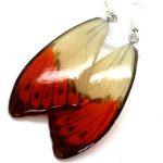 серьги из крыльев бабочек оранжево-белые