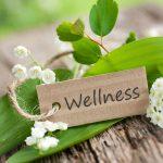Велнес : основные принципы формирования здорового образа жизни