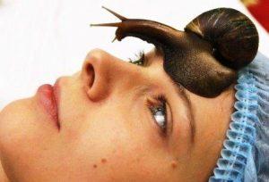snail care улиточный крем для лица