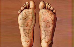 органы тела на пятках