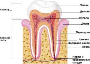 как сделать зубы белее без вреда