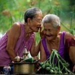 Как правильно принимать тайские травки?