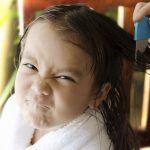 Вши: как избавиться от вшей и гнид без вреда для здоровья