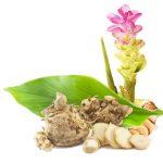 36 полезных свойств и побочные действия куркумы яванской